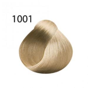 Dimension 1001 Осветляющий Пепельный Блондин